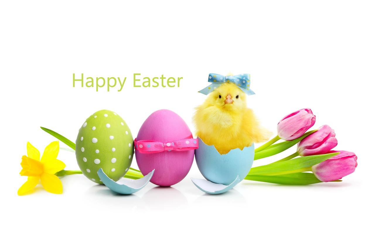 Awesome Easter free background ID:324870 for hd 1280x800 desktop