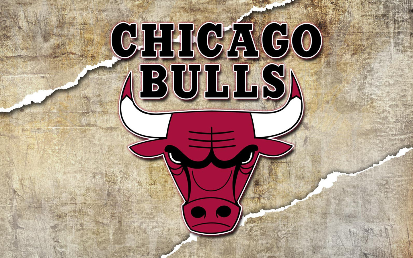 Best Chicago Bulls wallpaper ID:138065 for High Resolution hd 1440x900 computer