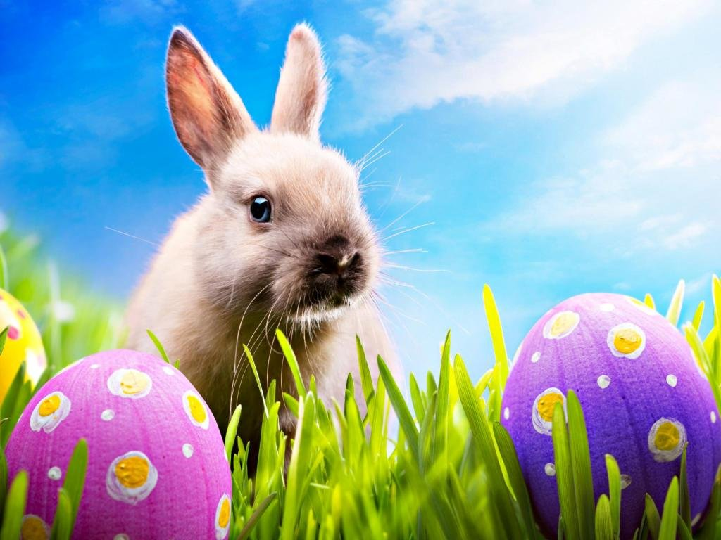 Best Easter background ID:324933 for High Resolution hd 1024x768 computer