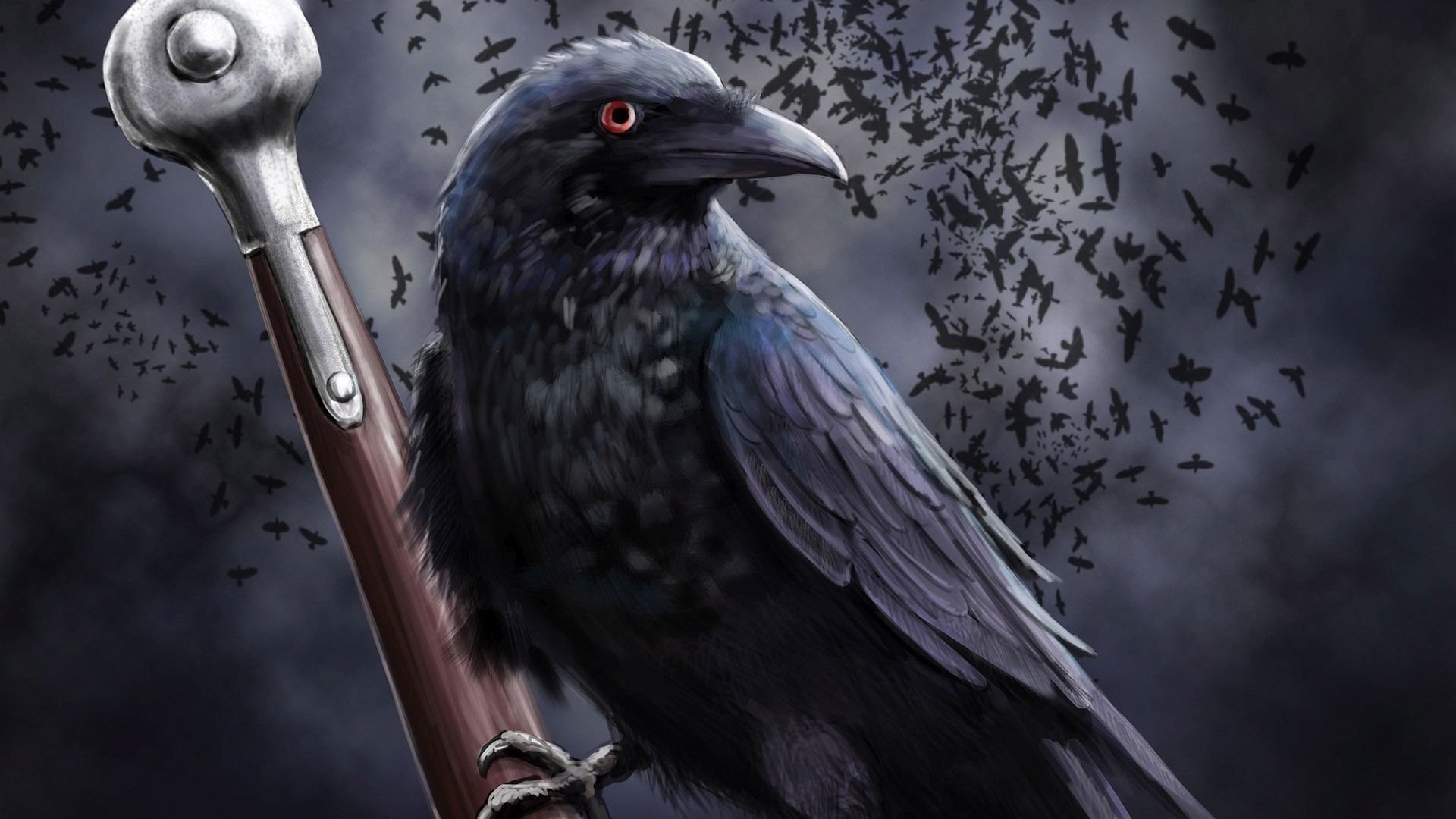 Free download Raven wallpaper ID:397344 full hd 1080p for desktop
