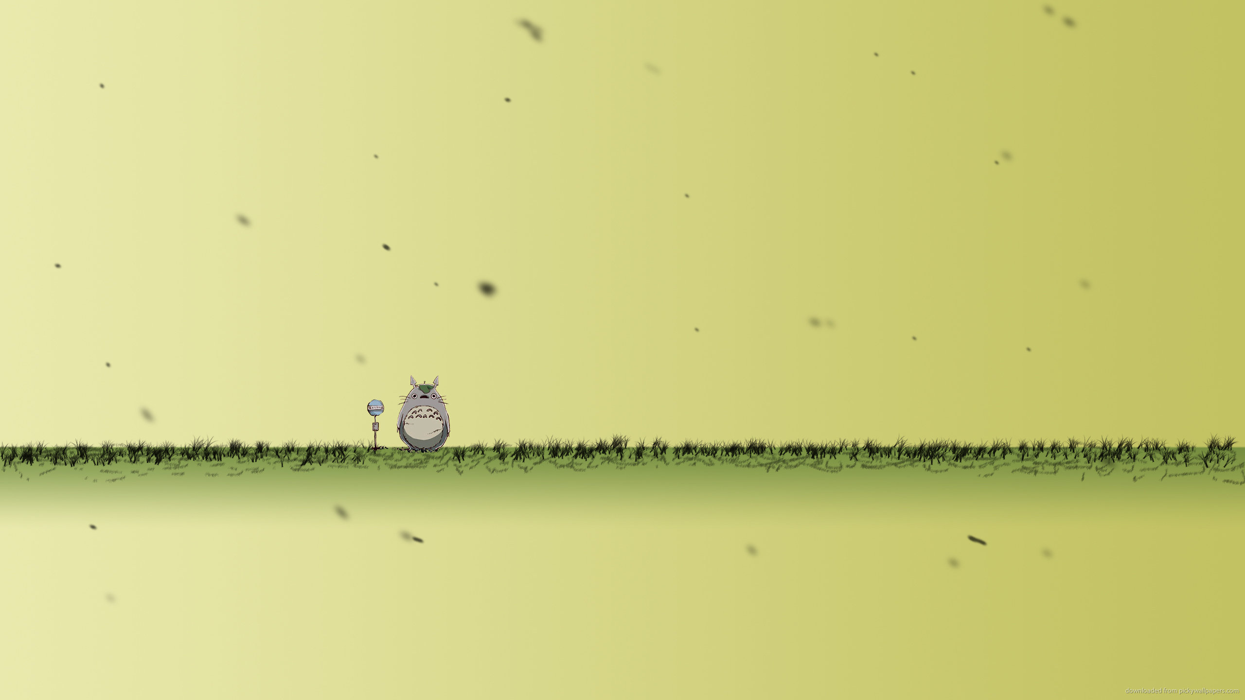 Free download My Neighbor Totoro background ID:259347 hd 2560x1440 for computer
