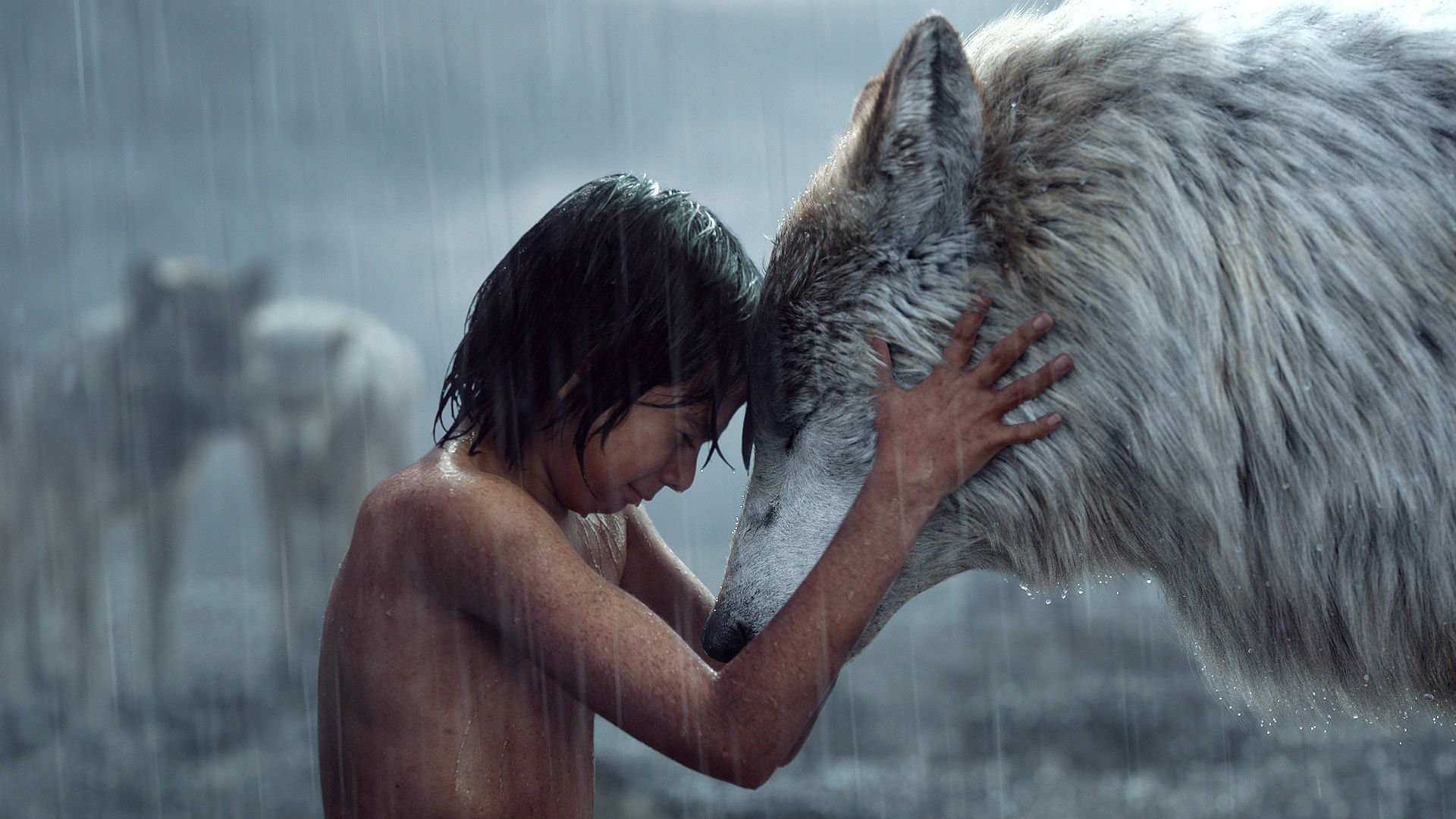 free download the jungle book movie (2016) wallpaper id:86426 full