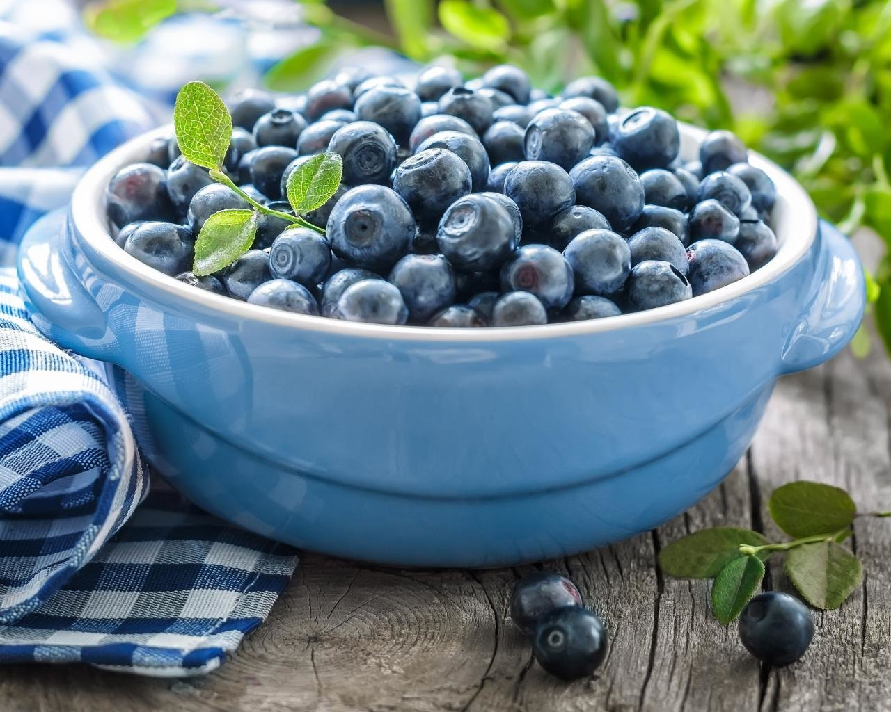 Free Blueberry high quality background ID:69041 for hd 1280x1024 PC