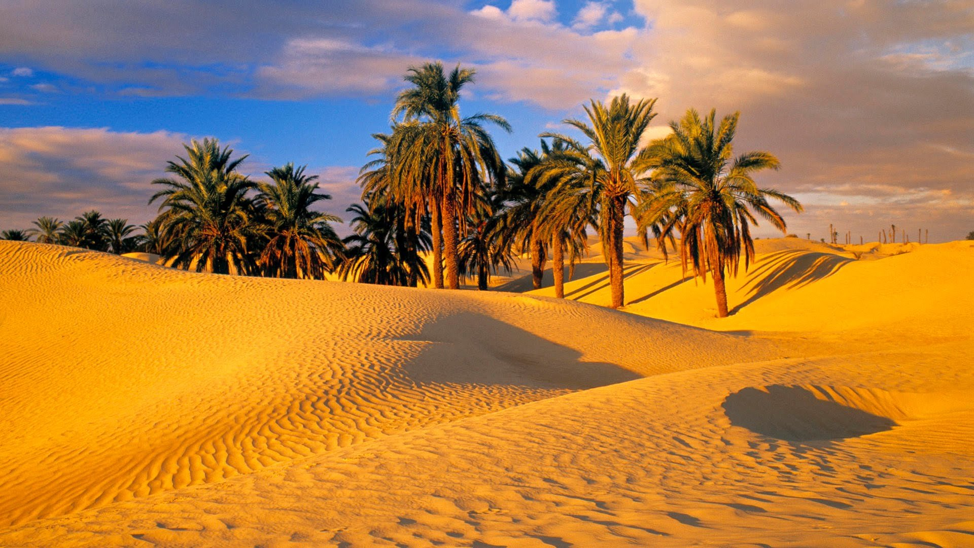Free Download Desert Background Id 225722 Hd 1080p For Pc