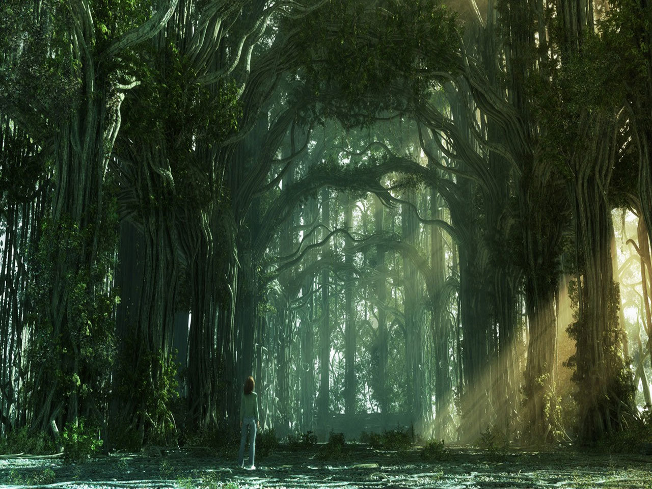 Download hd 1280x960 Fantasy forest desktop background ID:20303 for free