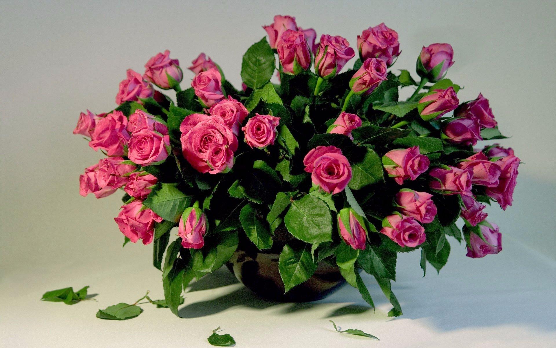 Free download flower bouquet background id179896 hd 1920x1200 for free download flower bouquet background id179896 hd 1920x1200 for desktop izmirmasajfo
