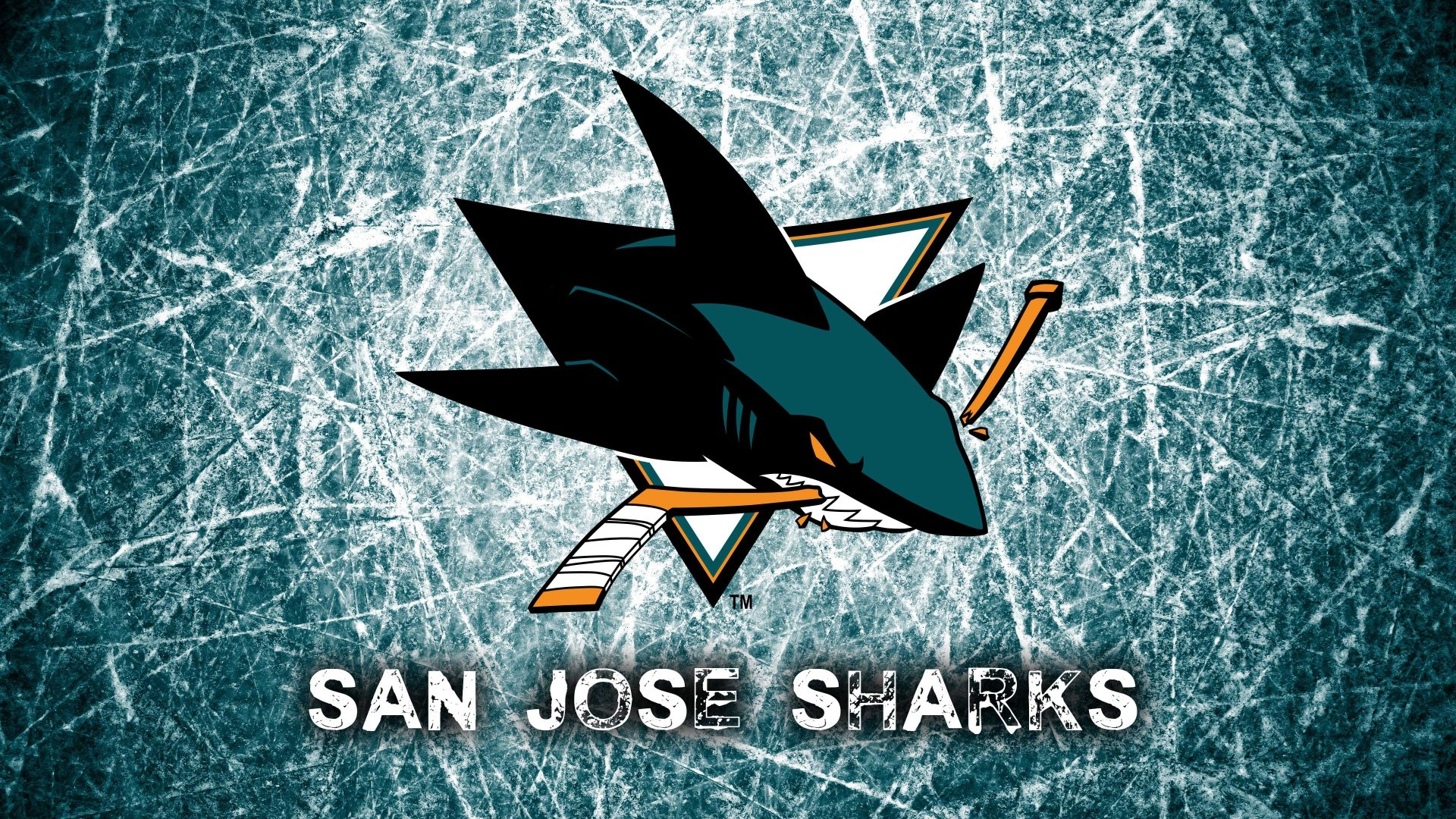 Best San Jose Sharks background ID:68959 for High Resolution full hd PC