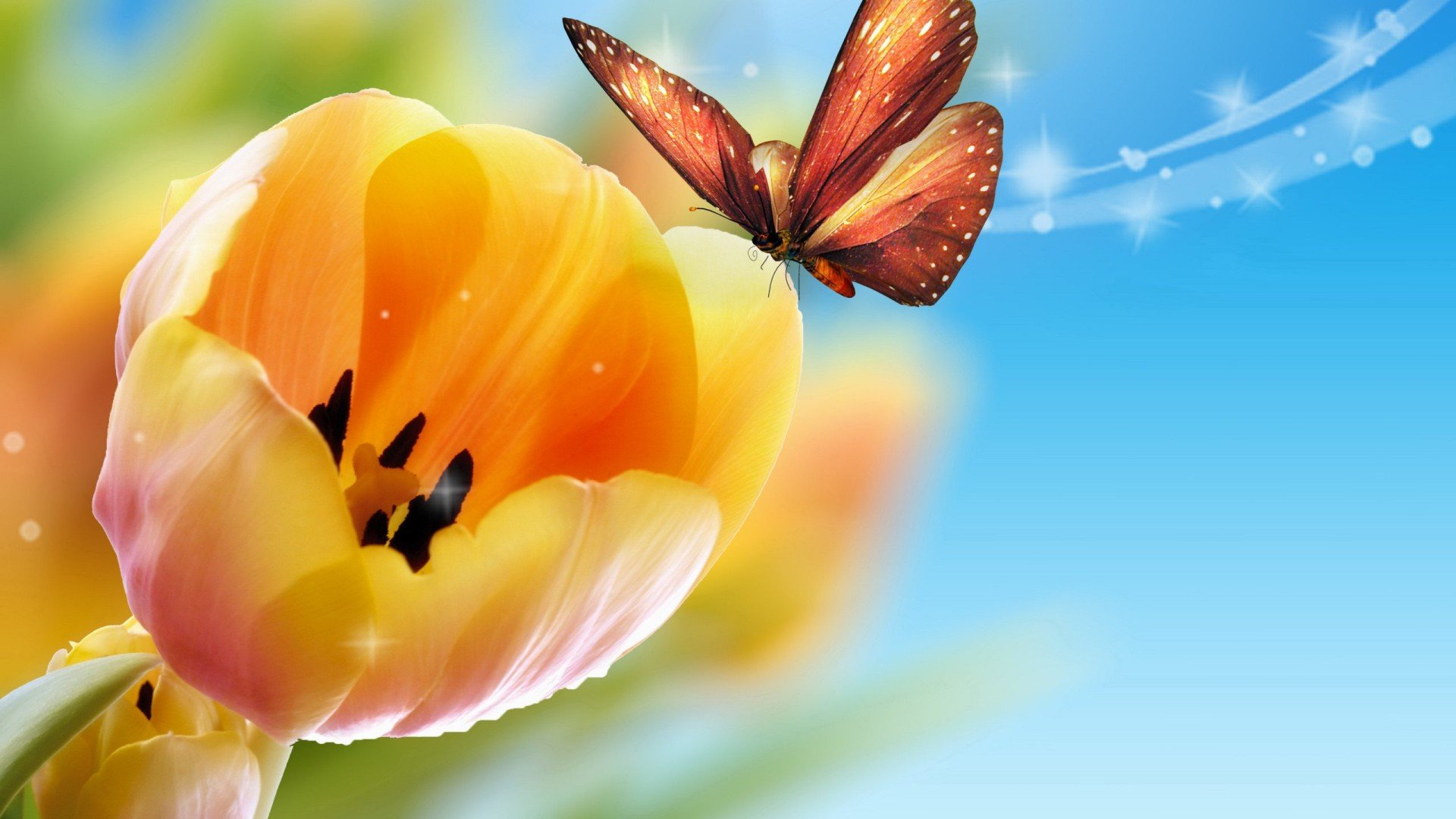 Free download Butterfly background ID:168738 full hd for desktop