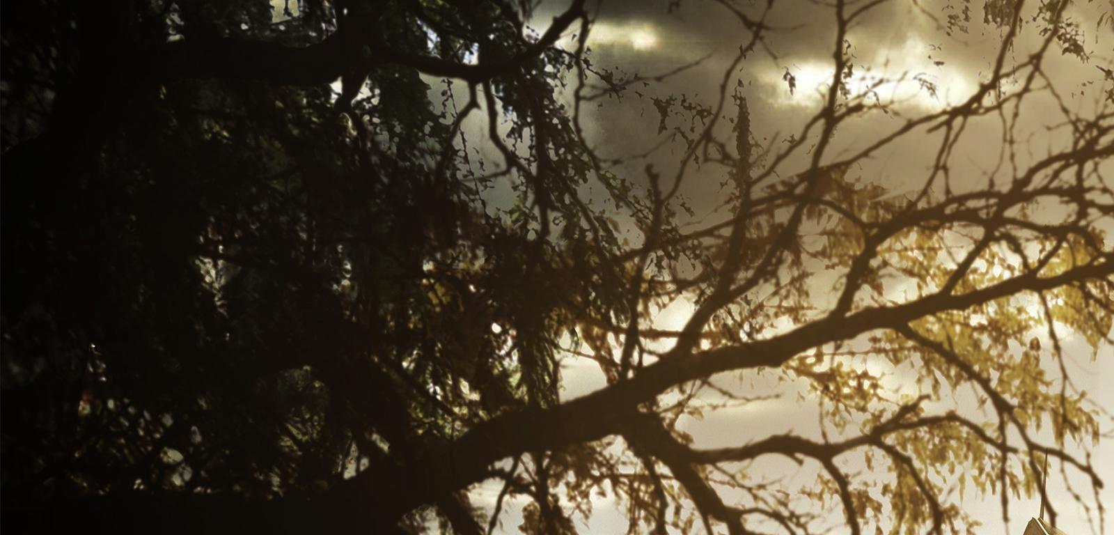 Resident Evil 7 Biohazard Wallpapers Hd For Desktop Backgrounds