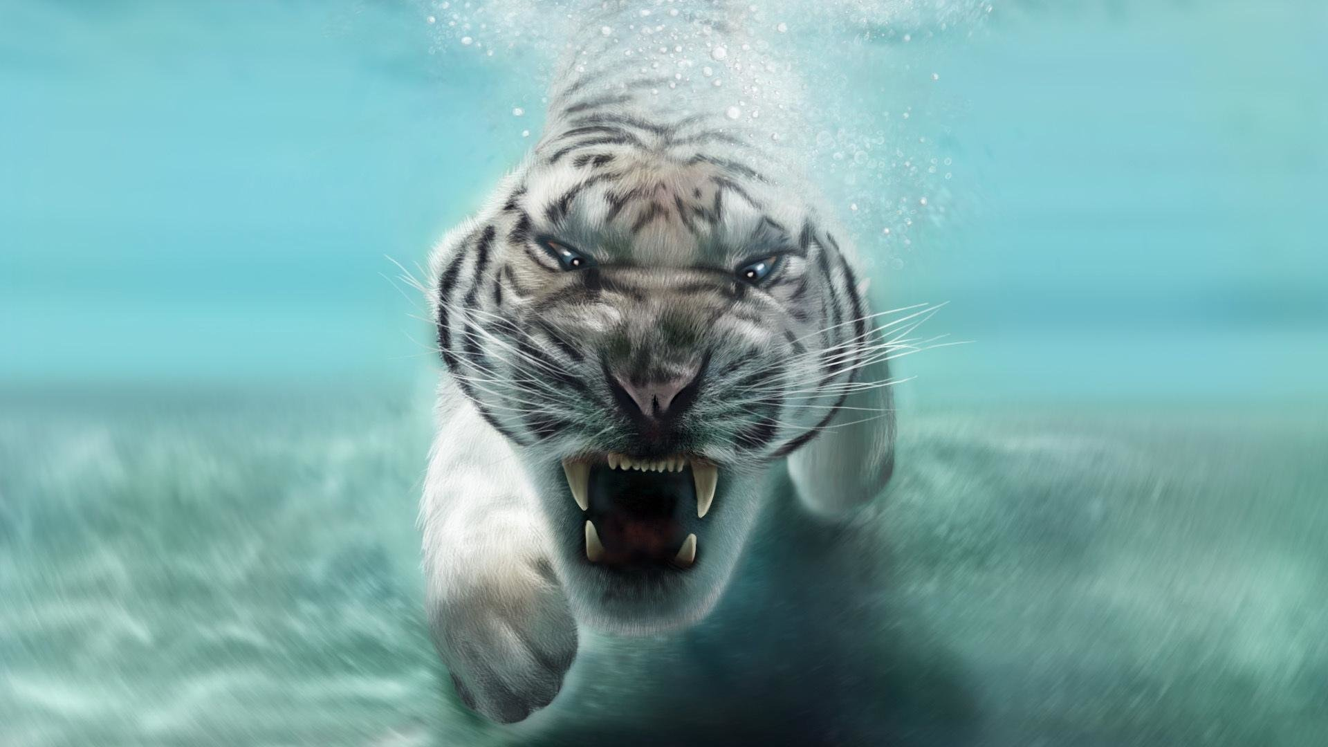 Free download White Tiger wallpaper ID:174972 full hd for computer