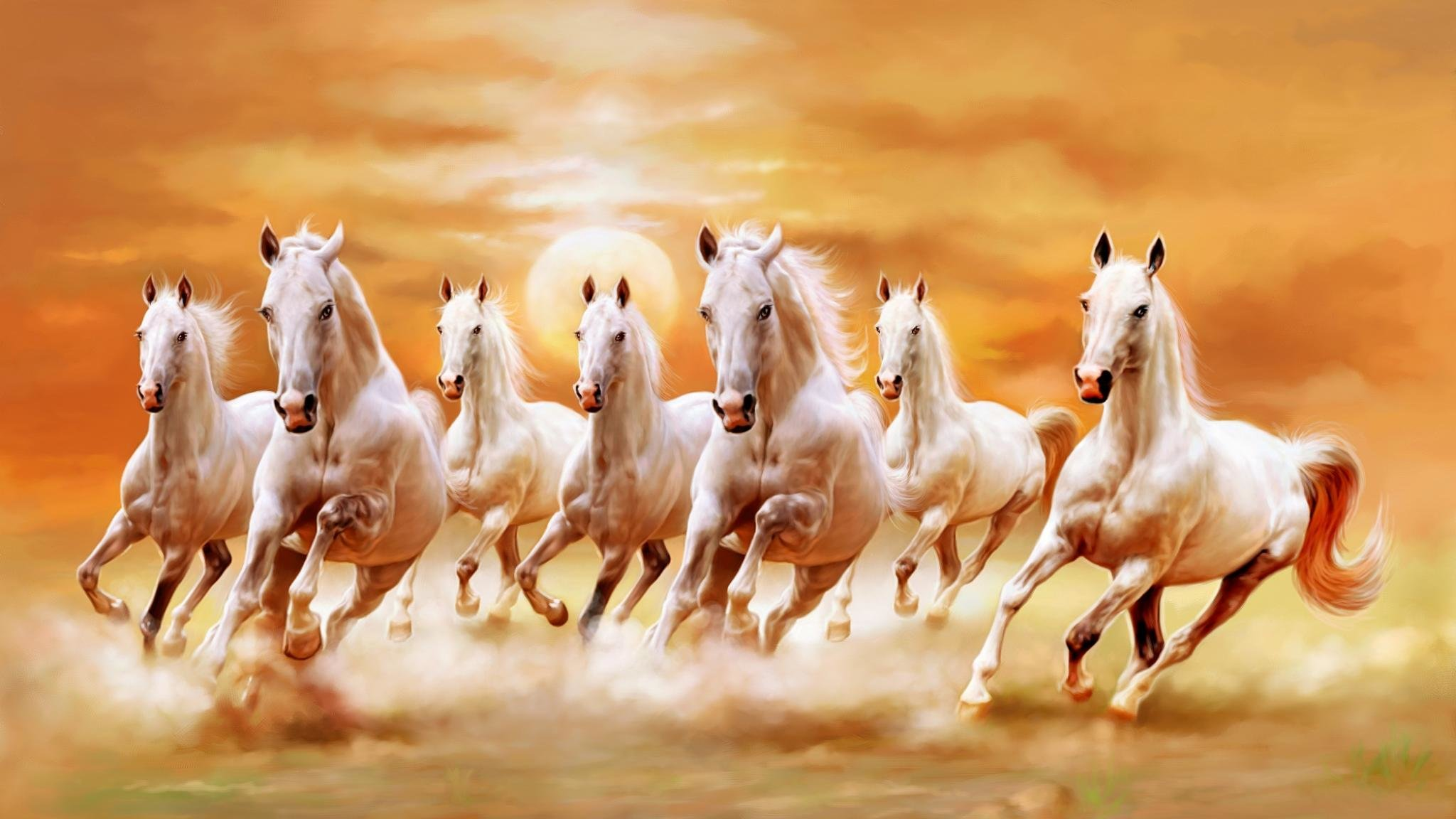 Download hd 2048x1152 Horse PC background ID:23196 for free