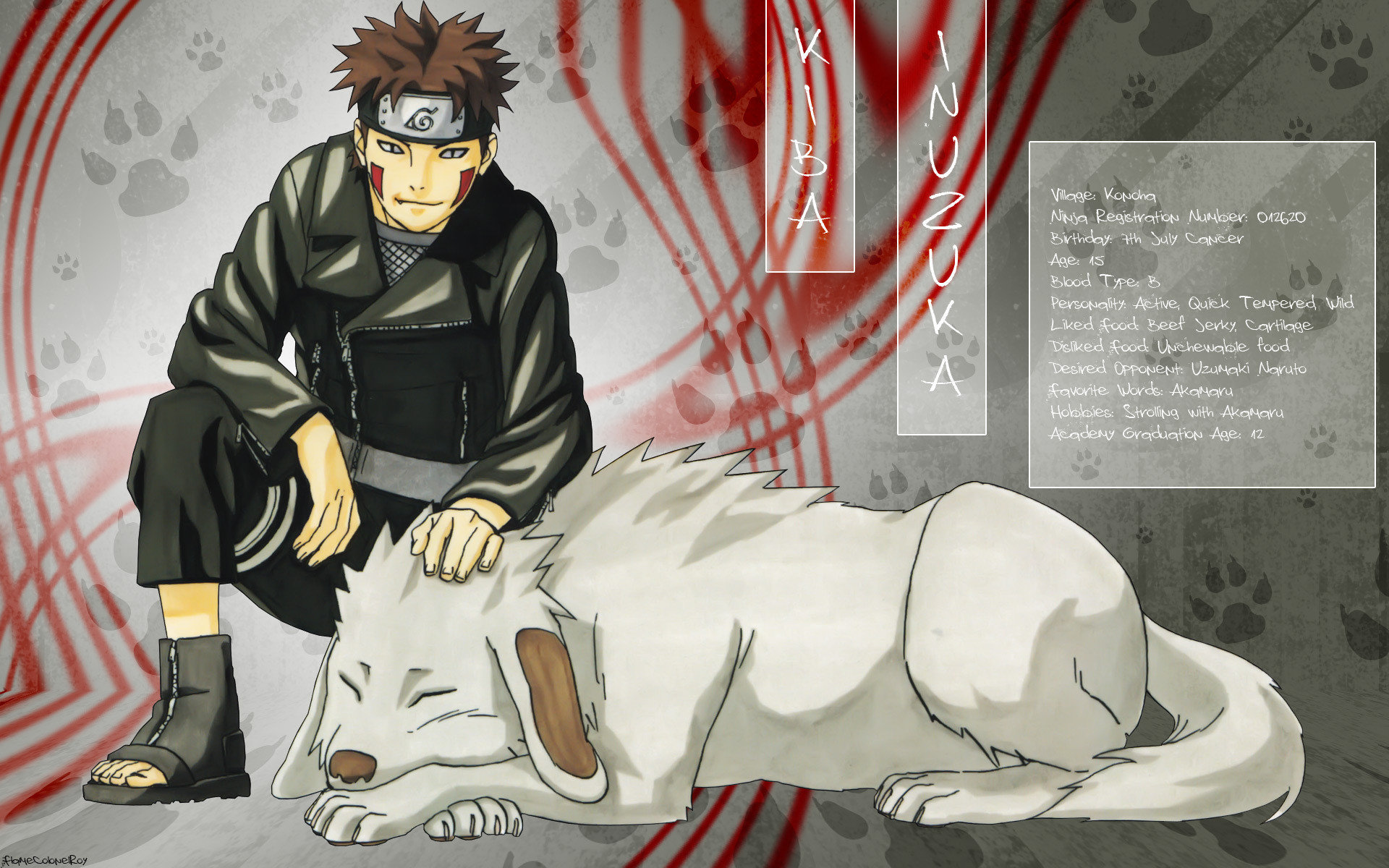 Download hd 1920x1200 Kiba Inuzuka desktop background ID:395142 for free