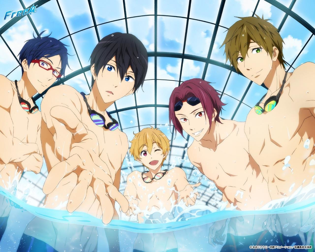 Free Free - iwatobi swim club high quality background ID:231947 for hd 1280x1024 PC