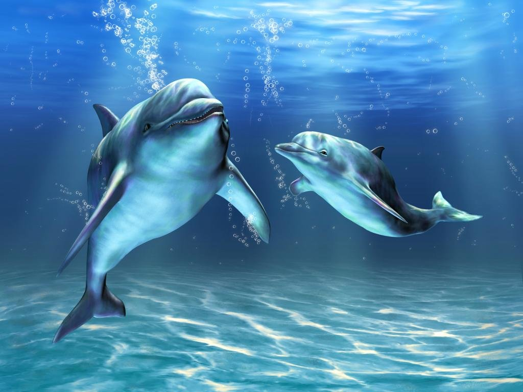 Awesome Dolphin free wallpaper ID:248446 for hd 1024x768 PC