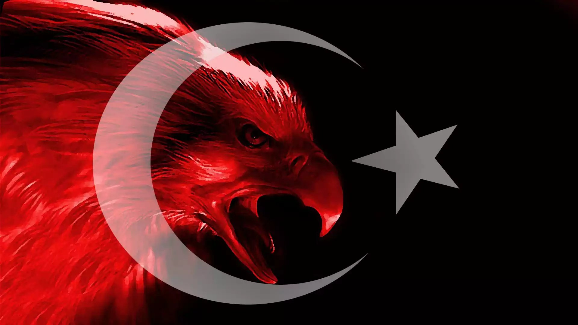 Free Turkey Flag High Quality Wallpaper ID493861 For 1080p Computer