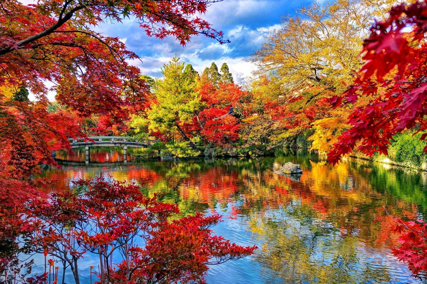 Free Download Japanese Garden Wallpaper ID92635 Hd 1440x960 For PC
