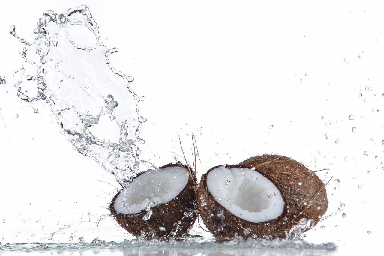 High resolution Coconut hd 1280x854 wallpaper ID:402971 for computer