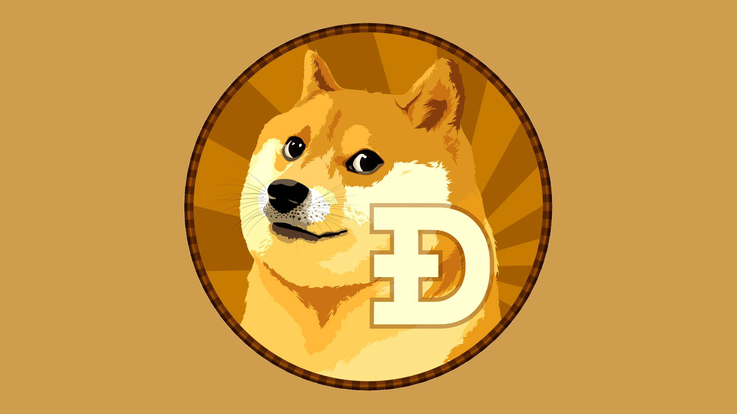High resolution Doge hd 2560x1440 wallpaper ID:64464 for PC