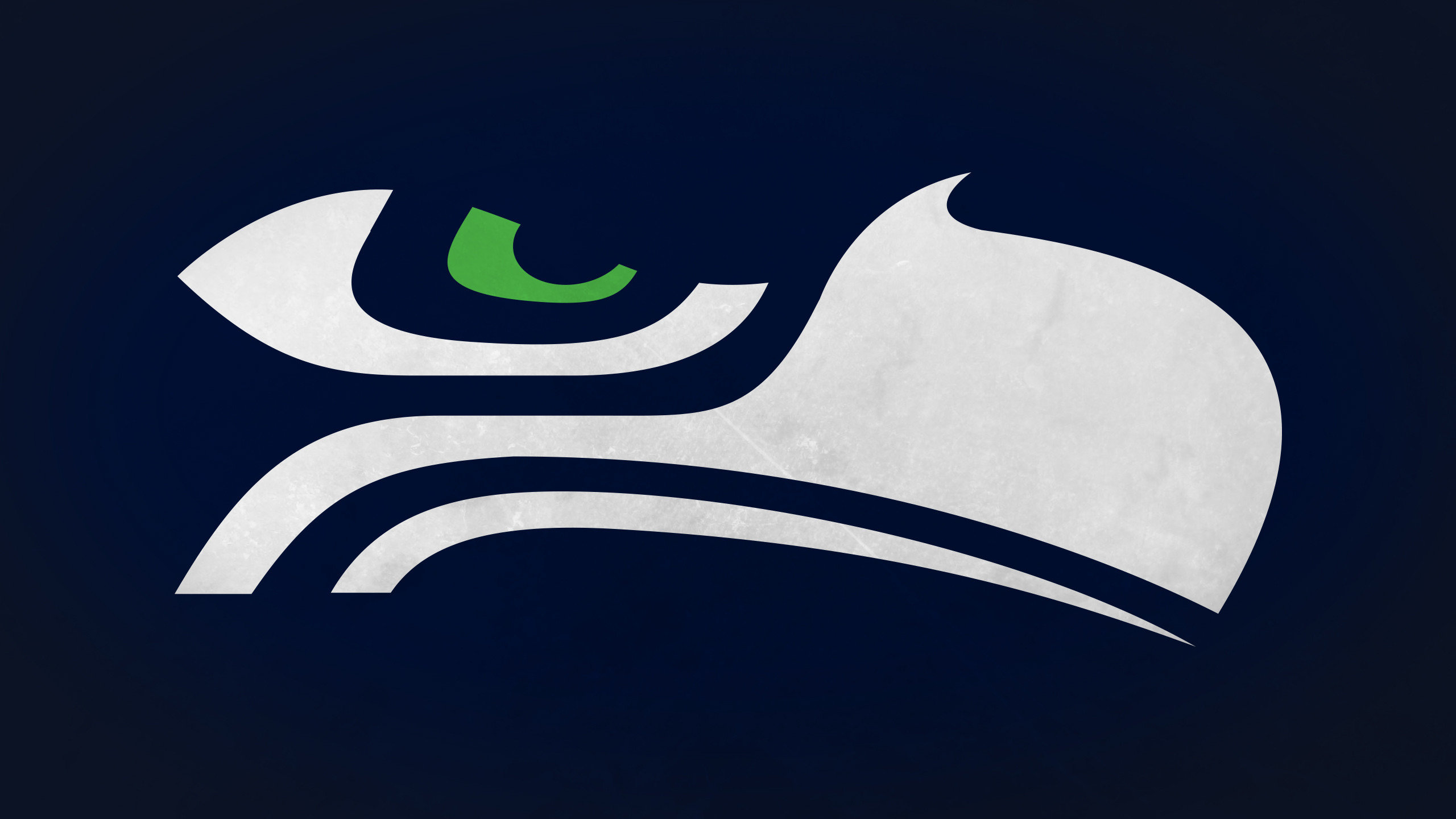 Awesome Seattle Seahawks free background ID:348009 for hd 2560x1440 desktop