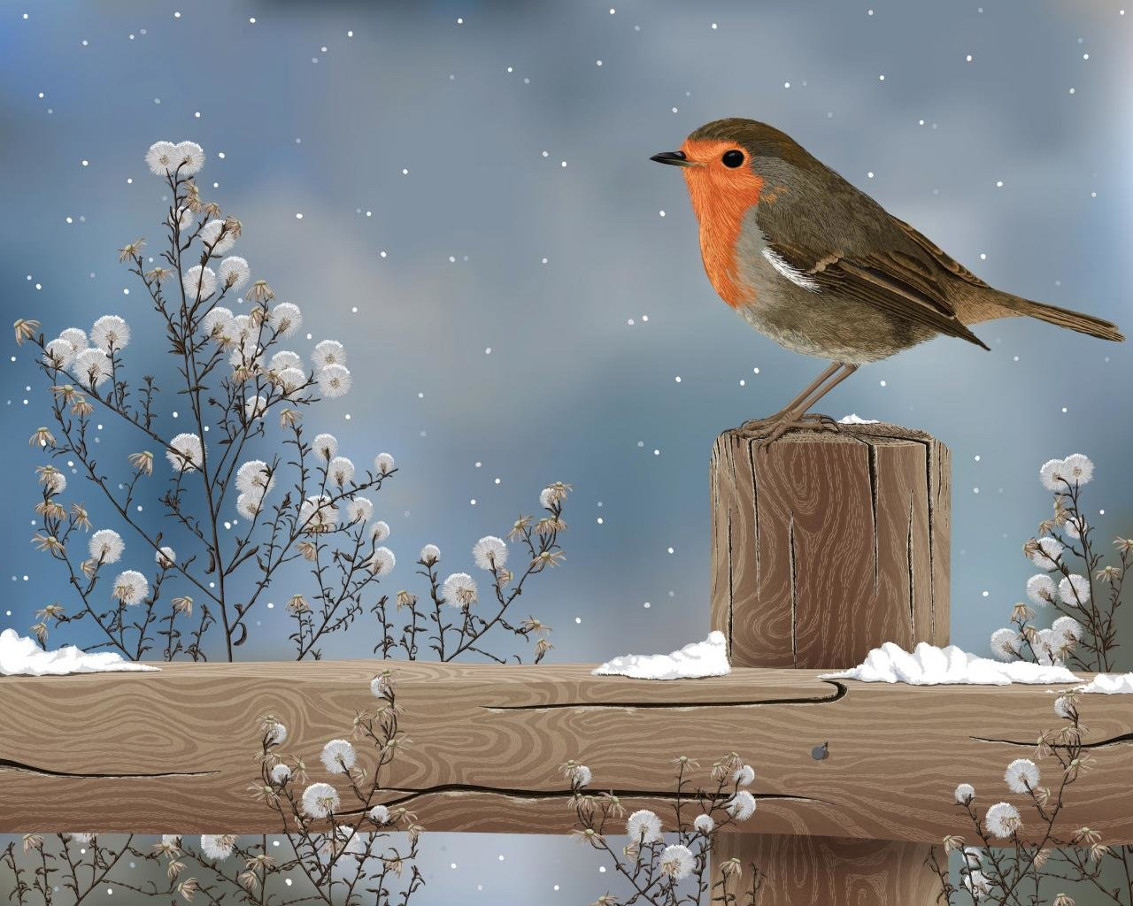 Free Robin bird high quality wallpaper ID:360151 for hd 1280x1024 PC