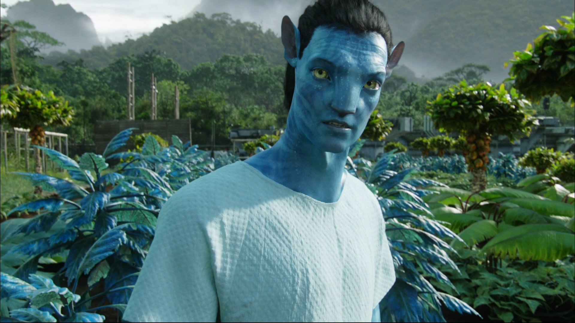 Free Download Avatar Wallpaper Id73249 Full Hd 1080p For Computer