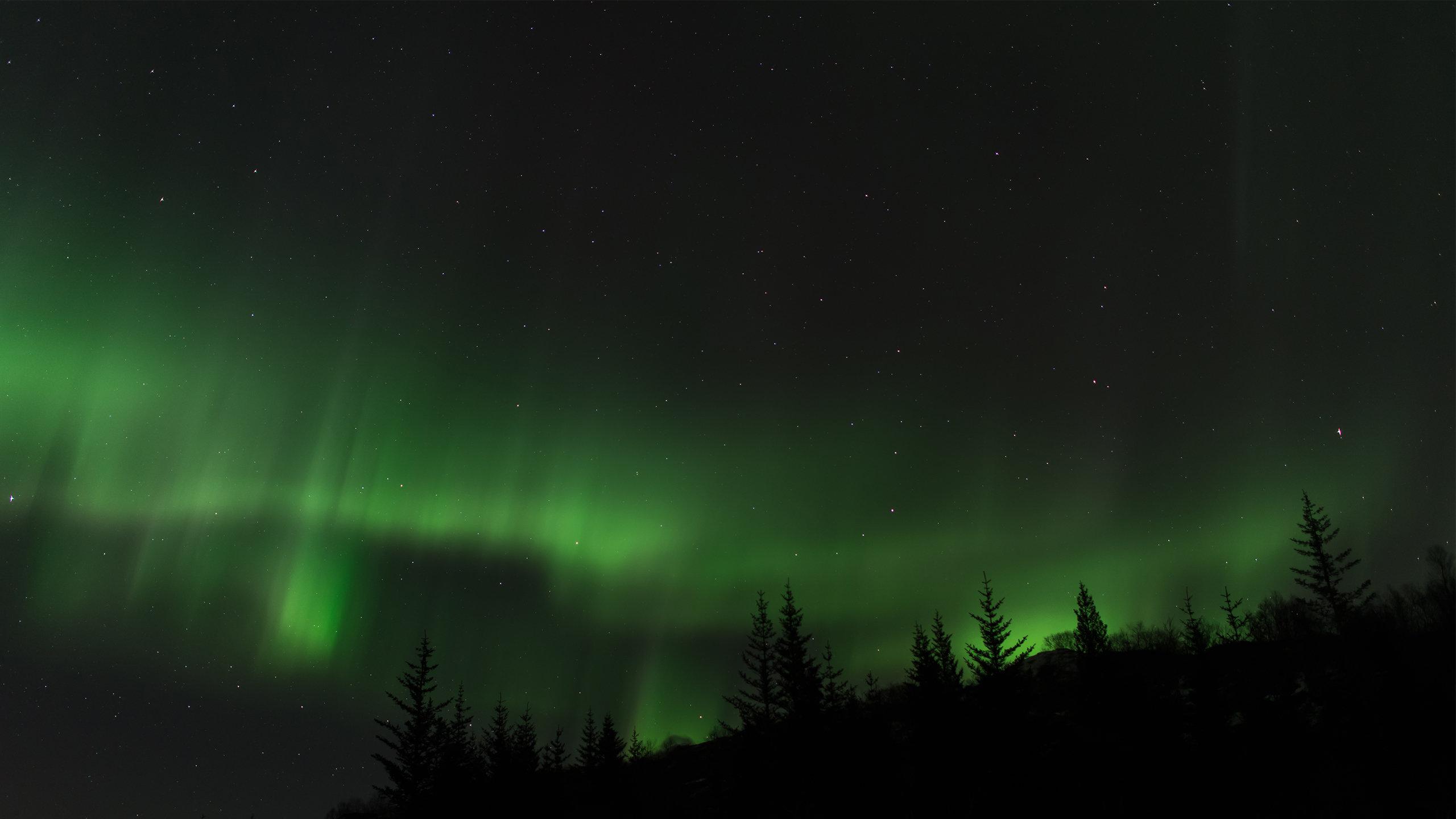 free aurora borealis high quality wallpaper id:283620 for hd