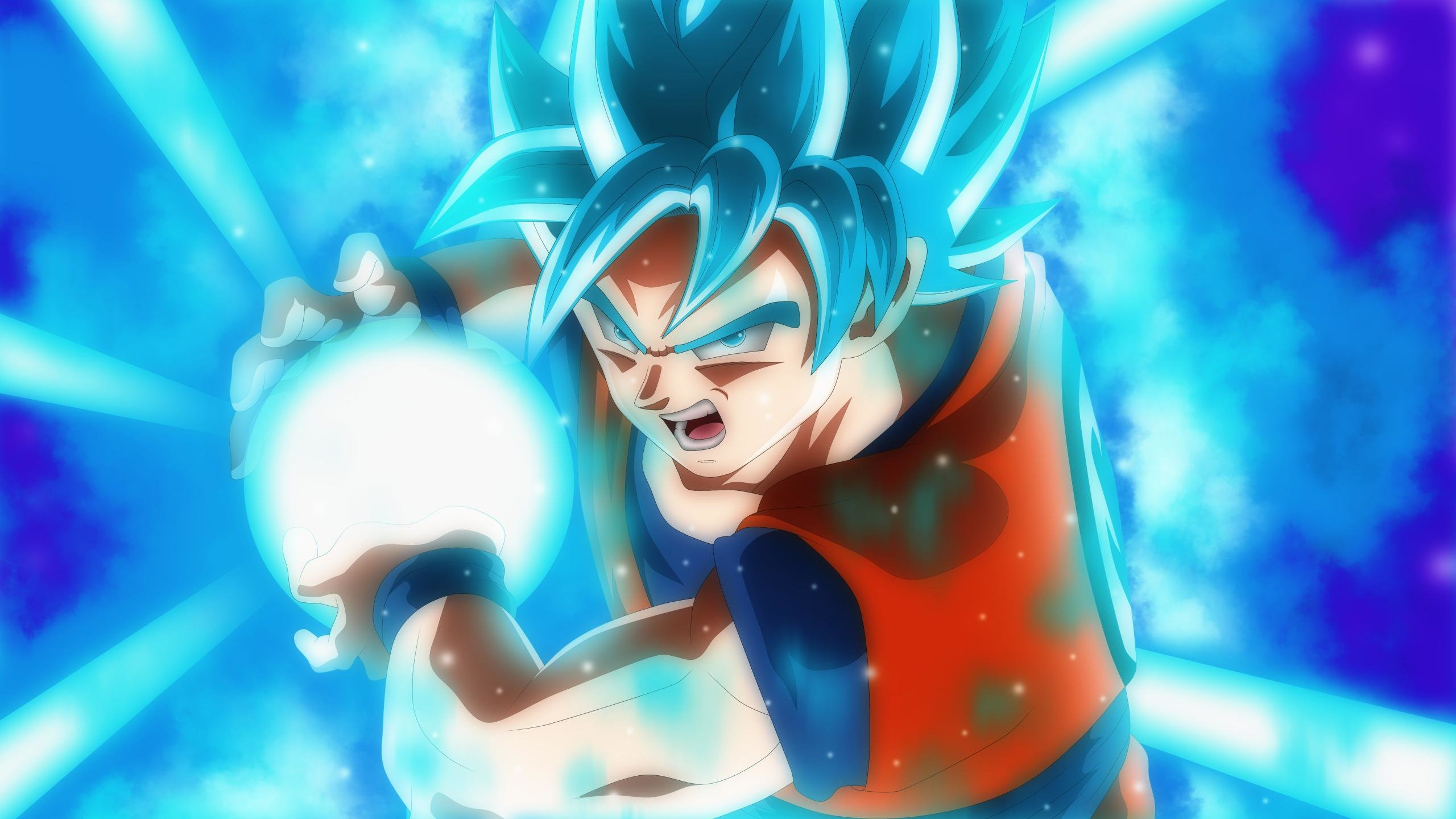 Download hd 2560x1440 Dragon Ball Super PC background ID:242726 for free