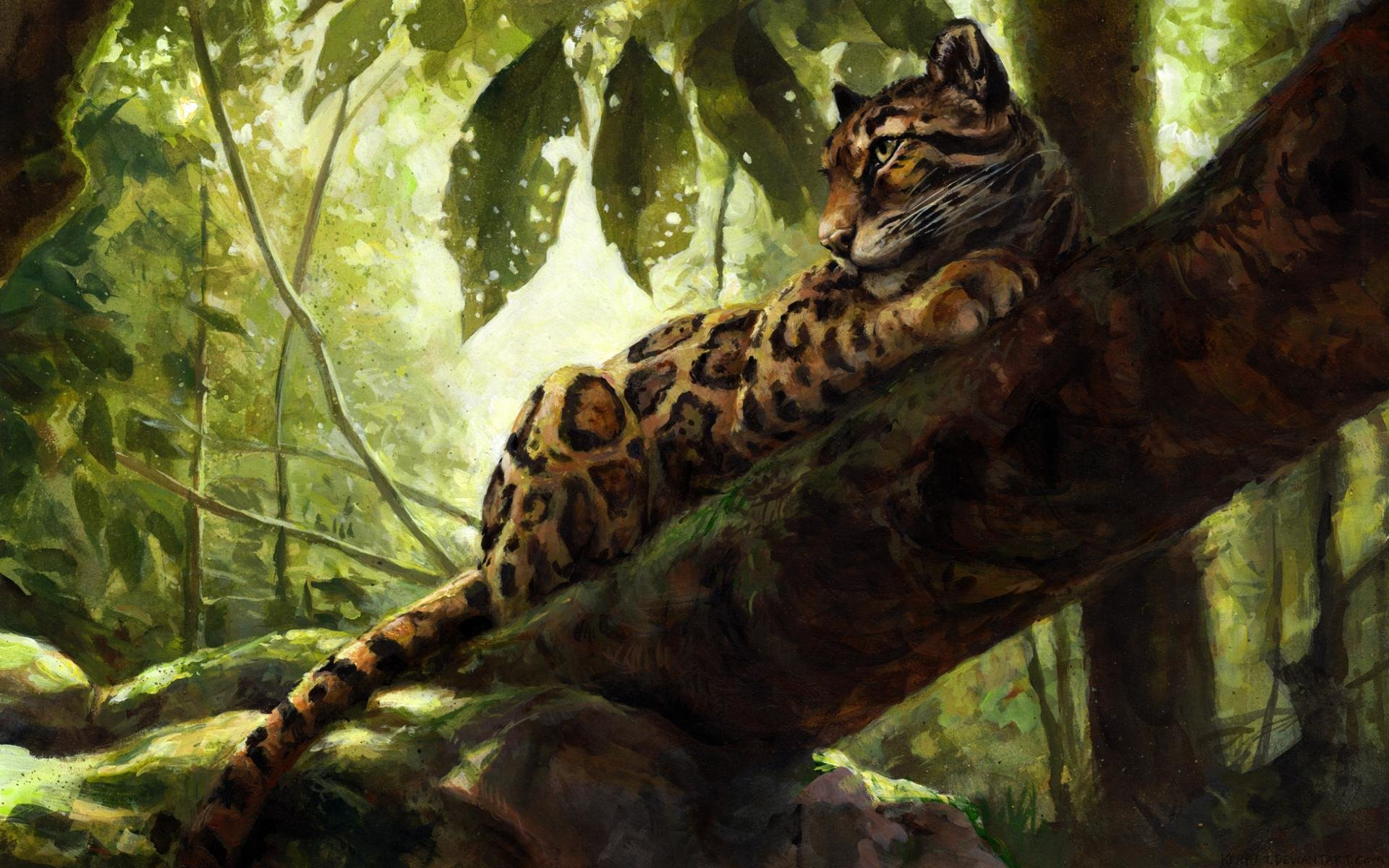 Free download Clouded Leopard background ID:260361 hd 1920x1200 for computer