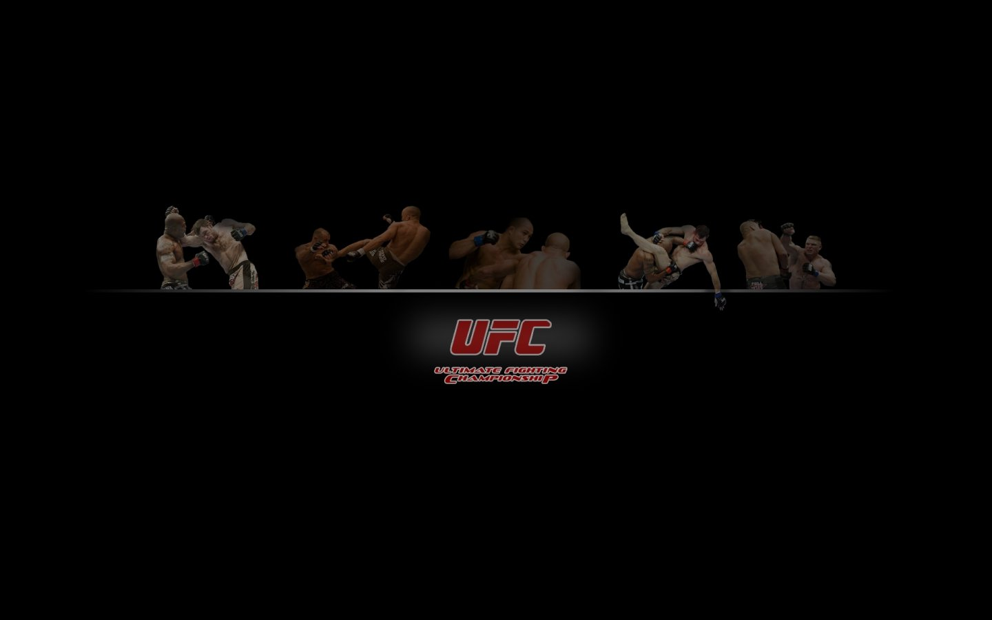 Free MMA (Mixed Martial Arts) high quality background ID:389460 for hd 1440x900 PC