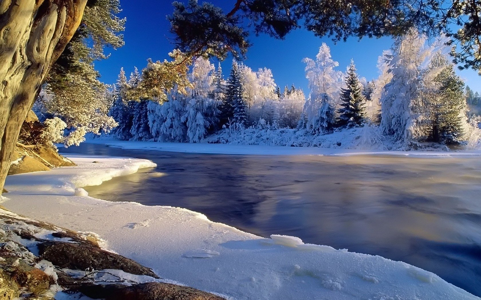 Winter Wallpapers 1680x1050 Desktop Backgrounds