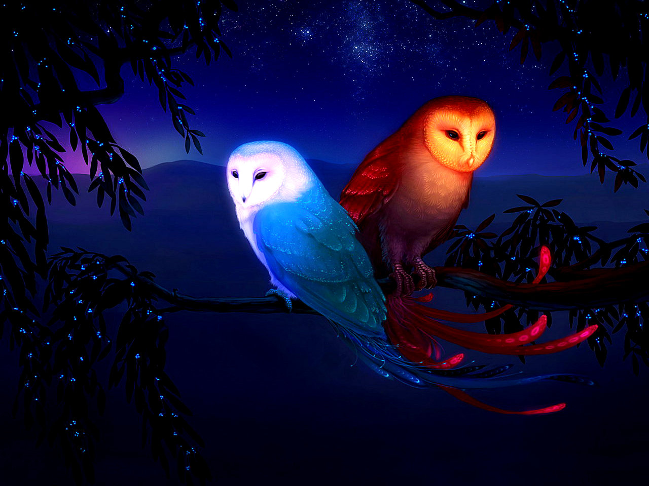 Awesome Owl free background ID:236875 for hd 1280x960 PC