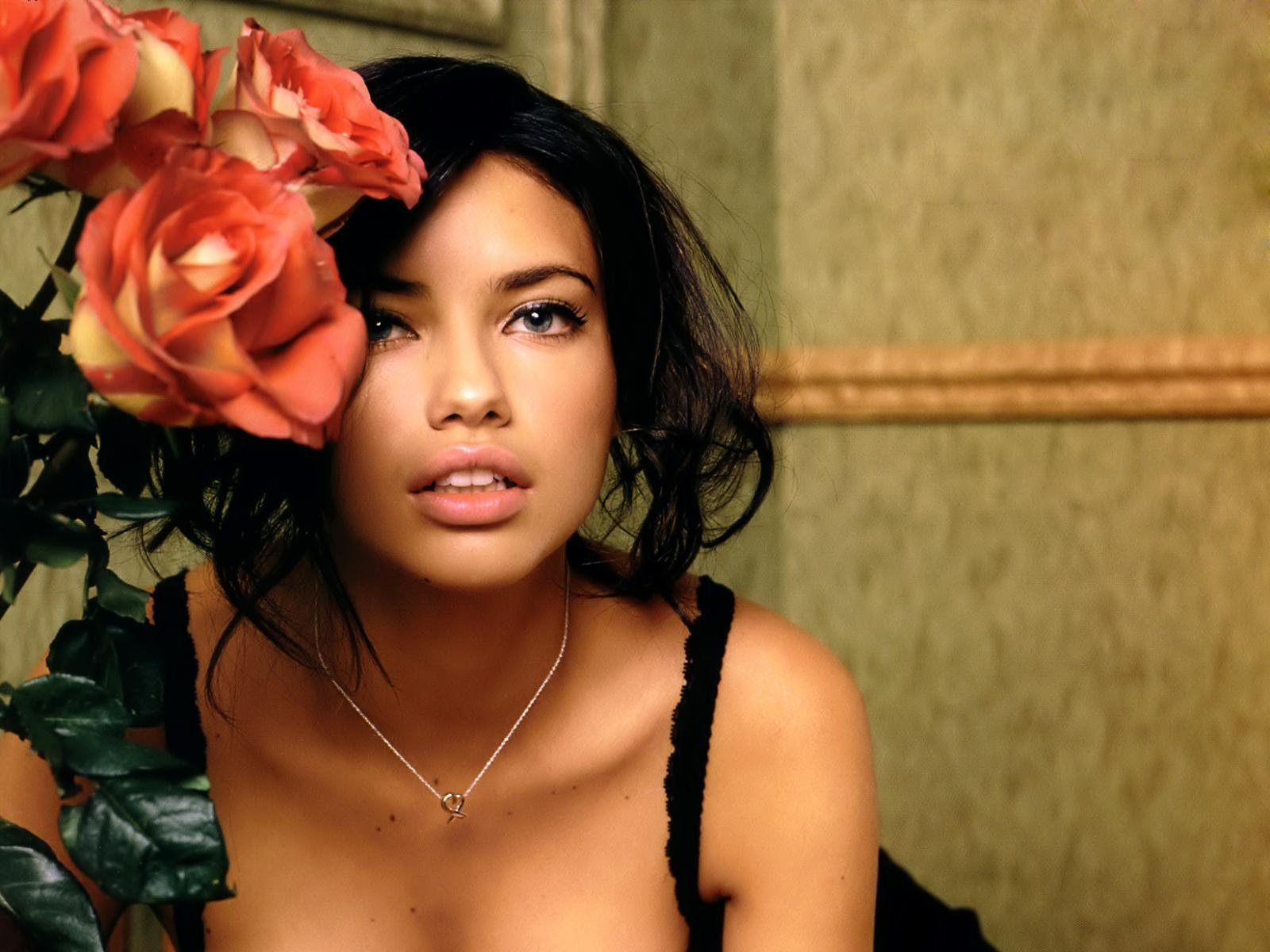 Free download Adriana Lima background ID:334026 hd 1600x1200 for desktop